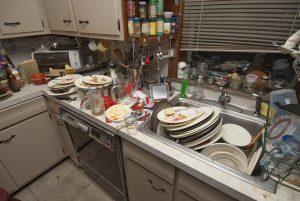 Unsanitary kitchen